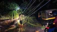 ചുഴലിക്കാറ്റ്; വൈദ്യുതി വിതരണം പ്രതിസന്ധിയില്, കെഎസ്ഇബിക്ക് നഷ്ടം 3 ലക്ഷം രൂപ, മരങ്ങള് വീട്ടുകാര് മുറിച്ചുമാറ്റണമെന്ന്