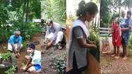 ഭൂപോഷണ യജ്ഞം:  തുളസിത്തൈകള് നട്ട്  ബാലഗോകുലത്തിന്റെ  'അങ്കണത്തുളസി'' പദ്ധതിക്ക് തുടക്കം