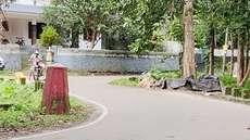 അരയാലിന്റെ സംരക്ഷണഭിത്തി പൊളിച്ച് നീക്കി, സമീപത്തെ രക്തസാക്ഷി മണ്ഡപം കണ്ടില്ല