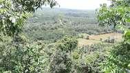 കുമ്പളയുടെ ടൂറിസം ഭൂപടത്തിലേക്ക് കിദൂര് പക്ഷി ഗ്രാമം