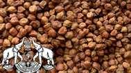 സിവില് സപ്ലൈസിന്റെ അനാസ്ഥ; കൊവിഡ് കാലത്ത് പാവങ്ങള്ക്കായി കേന്ദ്രം നല്കിയ 596.7 ടണ് കടല പഴകി നശിച്ചു