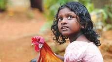 പൂവന്കോഴി - പൂവന്കോഴി  കേന്ദ്രകഥാപാത്രമാകുന്ന അപൂര്വ്വ ചിത്രം