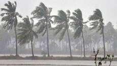 അതിശക്തമായ മഴയ്ക്ക് സാധ്യത: കണ്ണൂര് ജില്ലയില് 17 വരെ മഞ്ഞ അലര്ട്ട്, മലയോരമേഖലകളിലുള്ളവരെ ഉടനെ ക്യാമ്പുകളിലേക്ക് മാറ്റും