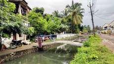 പടന്നത്തോടിലെ മലിനജലം: നഗരവാസികള് പകര്ച്ചവ്യാധി ഭീഷണിയില്