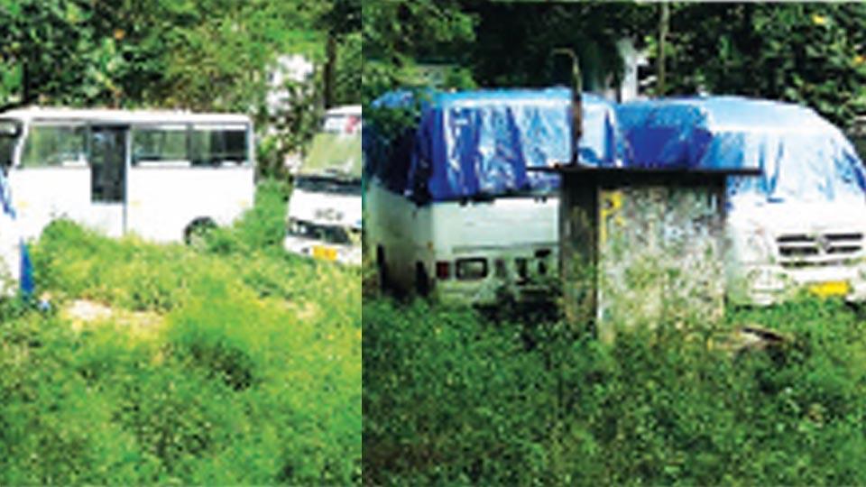 സ്കൂളുകൾ തുറക്കുന്നു...മിനി ബസുകാർ എന്തുചെയ്യും...സർക്കാർ മാനദണ്ഡം അനുസരിച്ച് സർവീസ് നടത്താനാവില്ല, കനിവ് പ്രതീക്ഷിച്ച് ഉടമകൾ